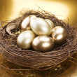 Golden Nest Eggs — Stock Photo #10679651
