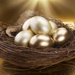 Golden Nest Eggs - 图库照片