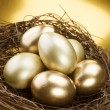 Golden Nest Eggs — Stock Photo #10679655