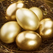 Golden Nest Eggs - Photo