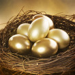 Golden Nest Eggs — Stock Photo #10679676