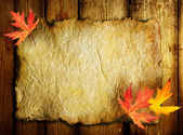 Autumn Leaves on the Old Paper sheet — Stok fotoğraf