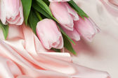 Tulips On Silk — Stock Photo