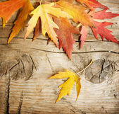 Autumn Leaves over wood background — Stock Photo