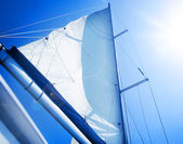 Sails over blue Sky. Yachting concept.Sailboat — Stock Photo