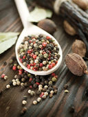Spices Closeup — Stockfoto