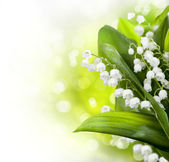 Lily-of-the-valley Flowers Design — Stok fotoğraf