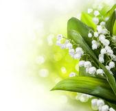 Desenho de flores de lírio-do-vale — Foto Stock