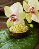 Spa. Scented Sea Salt And Orchid — Stock Photo