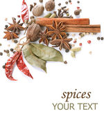 Spices Border. Isolated On White — Stok fotoğraf
