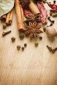 Kryddor gränsen. med kopia utrymme — Stockfoto