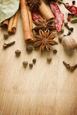 Spices Border. With Copy Space — Stockfoto
