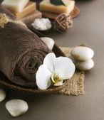 Tratamientos de spa — Foto de Stock