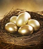 Złote jaja nest — Zdjęcie stockowe
