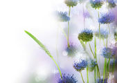 Abstract Flowers Border Design — Stock Photo