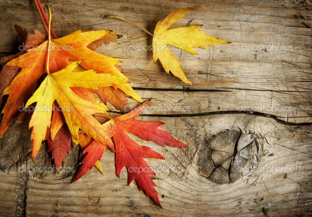 Autumn wooden background wallpaper download autumn - Autumn Leaves Over Wooden Background With Copy Space Stock Photo