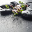 Zen Stones — Stock Photo #10680055