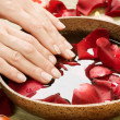 Hands Spa. Manicure concept — Stock Photo