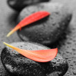 Zen Spa Wet Stones - Stockfoto
