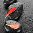 Zen Spa Stones Over Black - Stockfoto