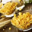 Cornflakes — Stock Photo #10680335