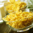 Cornflakes — Stock Photo #10680338