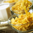 Cornflakes — Stock Photo #10680339