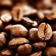 Roasted Coffee — Stock Photo #10680562
