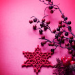 Christmas Decoration — Stockfoto #10680728