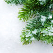 Christmas Tree over Snow.Winter Background — Stock Photo