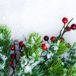 Christmas Decorations over Snow background — Stock Photo
