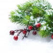 Christmas Tree and Decorations over Snow background — Stockfoto