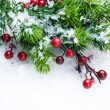 Christmas Tree and Decorations over Snow background - Stock Photo