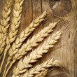 Wheat Ears on the Wood . Food Background — Stock Photo #10680878