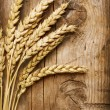 Wheat Ears on the Wood . Food Background — Stock Photo #10680893