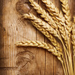 Wheat background — Stock Photo #10680897