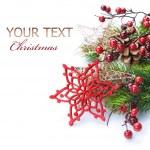 Christmas Decoration Border design isolated on white — Stock Photo #10681179
