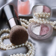 Make-up. Makeup Accessories — Stock Photo #10681461