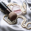 Make-up. Makeup Accessories — Stock Photo #10681470