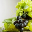bunch of grape — Stock Photo
