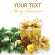 Christmas — Stock Photo #10682351