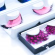 False Eyelashes — 图库照片 #10682524