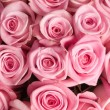 Big Roses Bouquet — Stock Photo #10682600