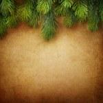 confine di albero Natale abete su sfondo d'epoca — Foto Stock
