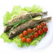 Grilled Fish — Stock Photo #10683893