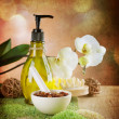 Spa And Body Care Treatment. Vintage Styled — Stock Photo