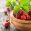 Strawberries — Stock Photo #10684542
