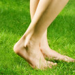 Royalty-Free Stock Photo: Woman&#039;s bare feet in green grass
