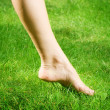 Woman's bare feet in green grass — Stock Photo