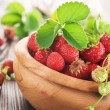 Strawberry — Stock Photo #10684574
